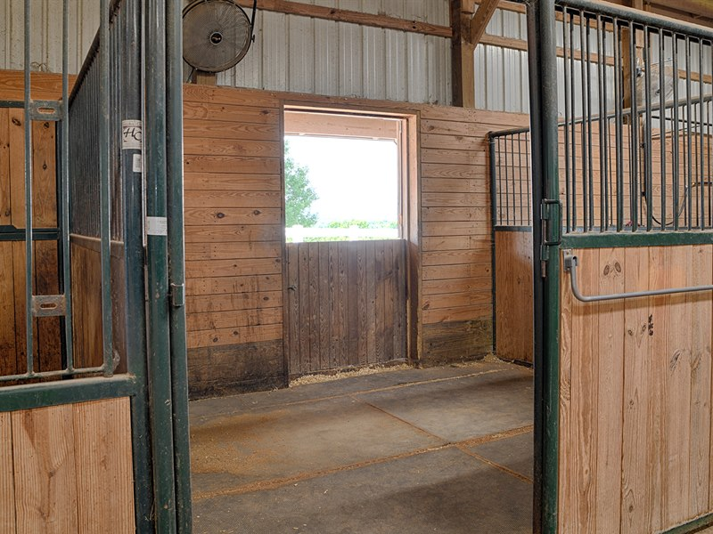 Stall with Dutch Doors