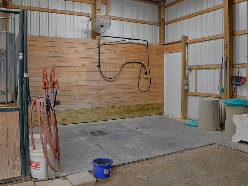Horse Wash Stall in Stable