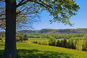 Nelson County Virginia Land for sale
