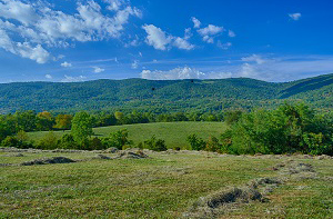 Afton VA Land for Sale
