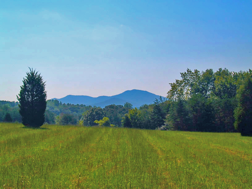 Nelson County Land sold