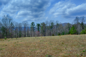 Albemarle County Virginia Land
