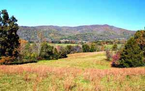 Virginia Farm in Amherst County
