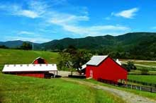 Farms for Sale in Virginia