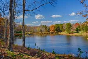 Albemarle County Land for sale