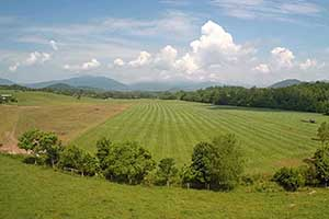 Greene County Virginia farm for Sale