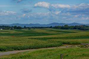 Farm for Sale in Virginia