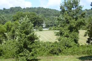 Madison County Virginia Farm