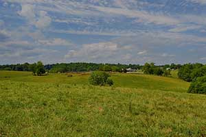 Madison County Virginia Farm for sale