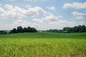 Madison County Va Farm for sale