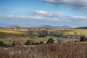 Greene County Virginia land for Sale
