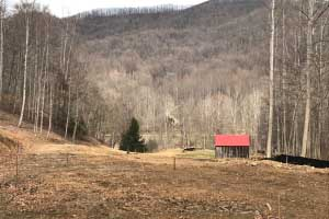 Nelson County Land for Sale
