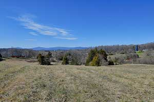 land in Madison County  Virginia for sale