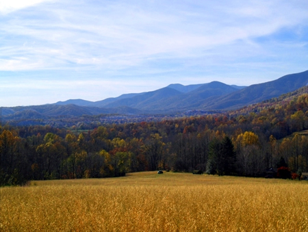 Nelson Land with Blue ridge Views