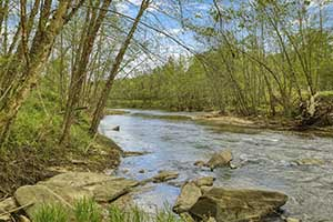 Madison County VA River front land for sale