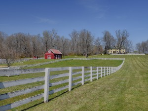 Spring Oak Farm