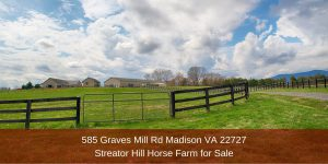 Horse Farm for Sale in Madison VA