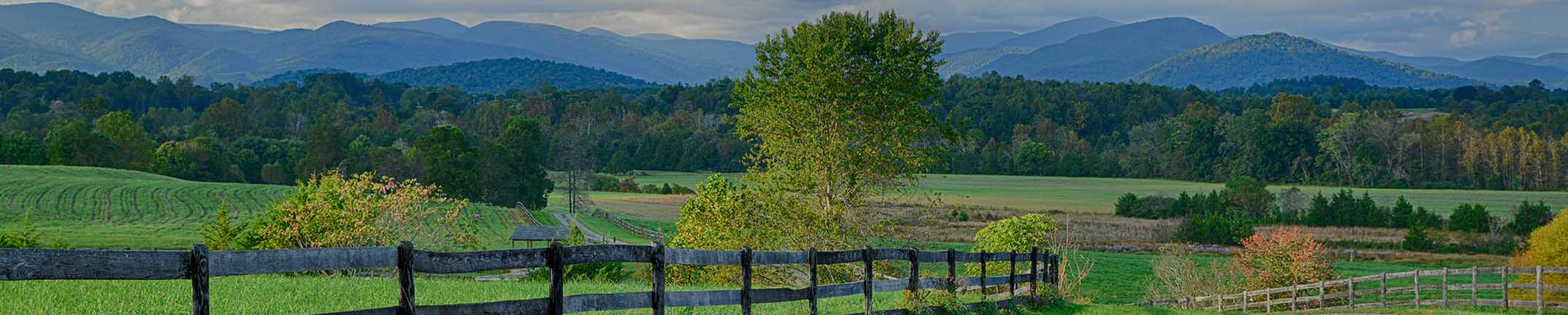 Charlottesville Real Estate looking at the Blue Ridge Mountains