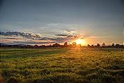 Virginia Small Farms